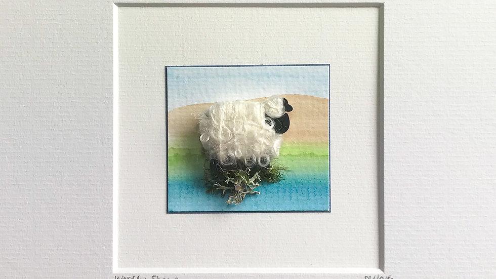Mount Woolly Sheep
