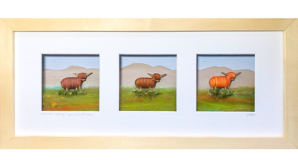 Long Triple Boxed Picture Highland Cows