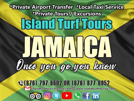 Are you Planning your next vacation, to Jamaica?