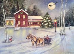 Christmas House Portrait