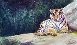 South China Tiger, Twenty Left