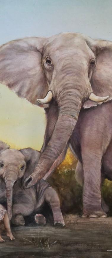 Endangered World: Protection