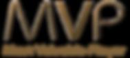 MVP Business יעוץ עסקי