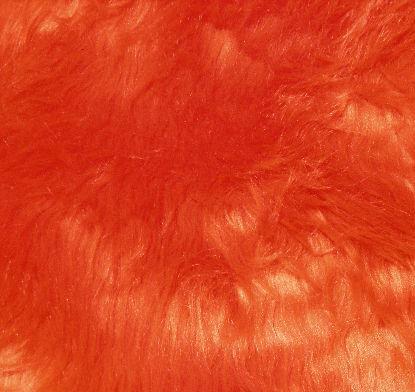 Orange Fur