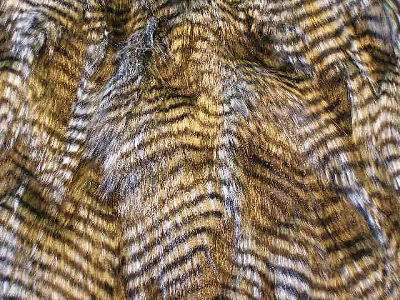 Long Grey Owl Fur