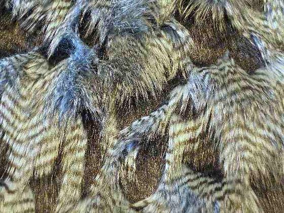 Long Steel Blue Owl Fur