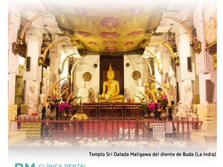 El venerado diente de Buda