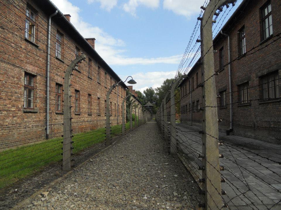 Human Rights POLONIA 2014