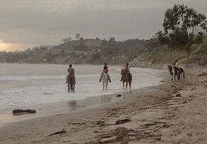 horses santa barbara
