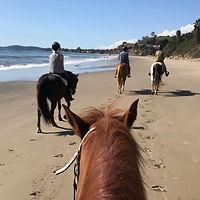 horses on the beach santa barbara