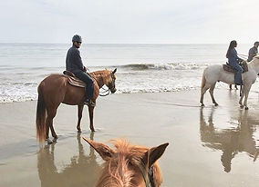 horse back riding on the beach santa barbara