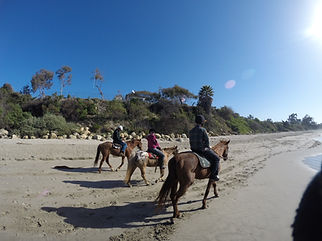 horseback riding on the beach