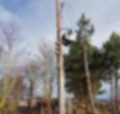 service pole (2)_edited.jpg