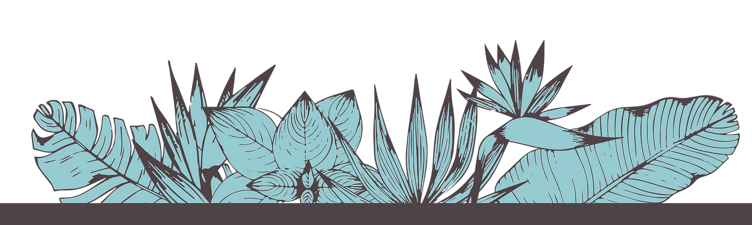 Plant Bottom PNG.png