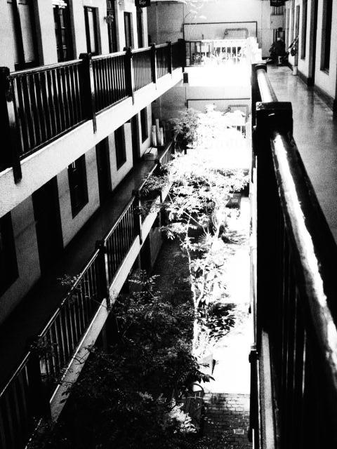 船場ビルディング since 1925