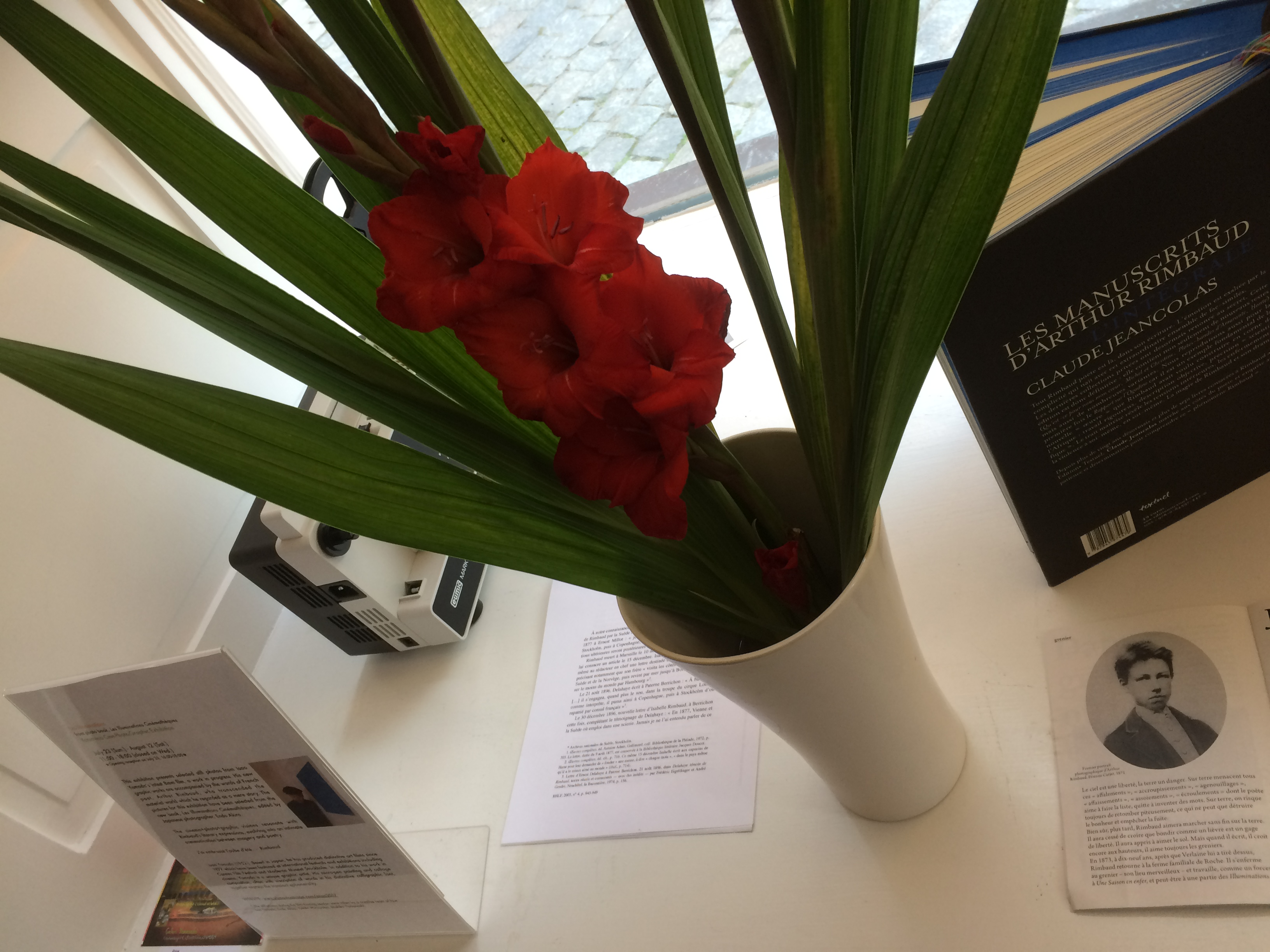 flowers from a guest
