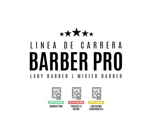 LINEA DE CARRERA.png