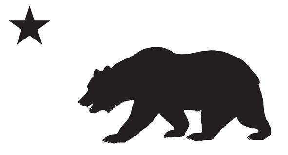 cali bear.jpg