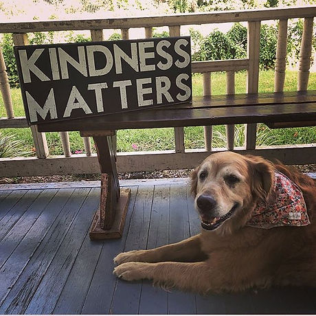 """Advice from our Resident Pup 🐶 These """"K"""