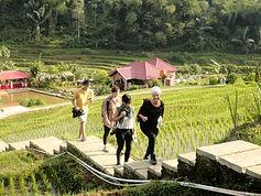LSI TOURS JAKARTA   See rural villages of West Java (2D/1N).