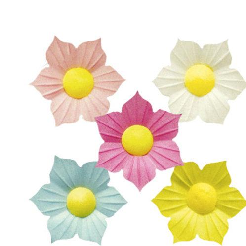 Вафельные цветы: нарциссы 200шт