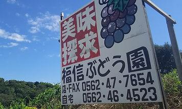 福信ぶどう園.jpg