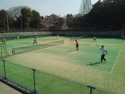 2019団体戦 0407明石公園02 撮影:明石市テニス協会
