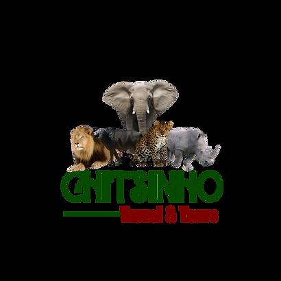 Chitsinho Travel & Tours.png