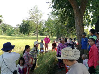 Project for Rice Seed Production and Promotion, Cambodia