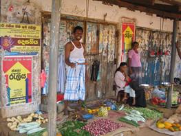 インド ジャルカンド州点滴潅漑導入による園芸栽培促進事業