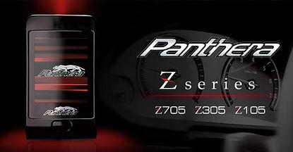 panthera-top.jpg