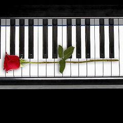 Pianos Unlimited Wichita, KS, Kansas City - Midwest Piano Sales, Service, & Restoration.