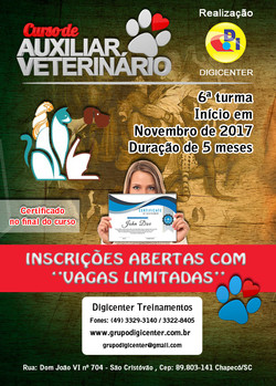 Panfleto Divulgação