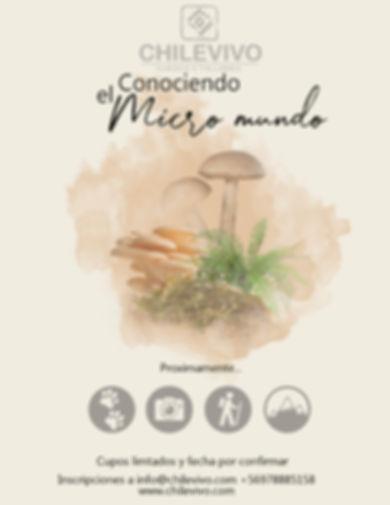 Afiche micromundo.jpg