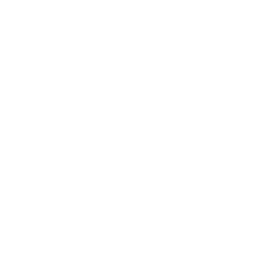PALM TREES solid.png