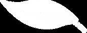 PBA-leaf.png