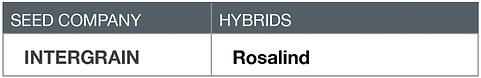 Barley Intergrain Rosalind
