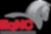 EqNC-Logo-HealthExcellence-Medium.png