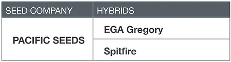 Wheat Pacific Seeds - EGA Gregory, Spitfire