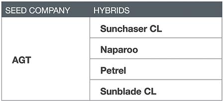 Wheat AGT - Sunchaser CL, Naparoo, Petrel, Sunblade CL