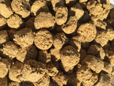 Benefits of feeding Extruded Feeds