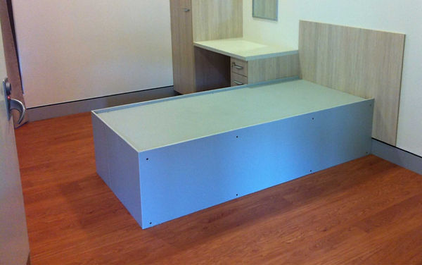 Bespoke polymer products plastic hospital bed
