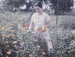 Elsie Hester Mack 1948.PNG