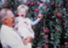 Candae and Vernon apples 1954.jpg