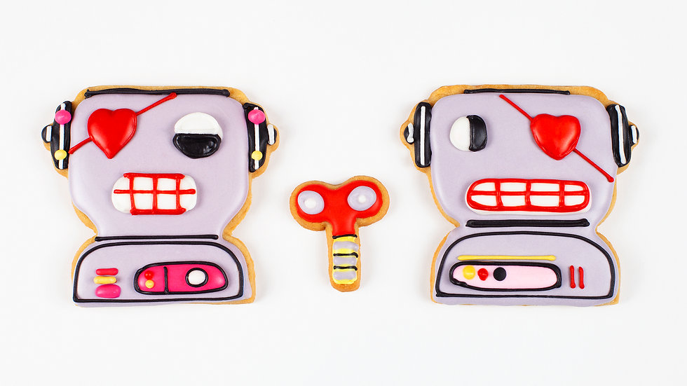 AMOUR ROBOT