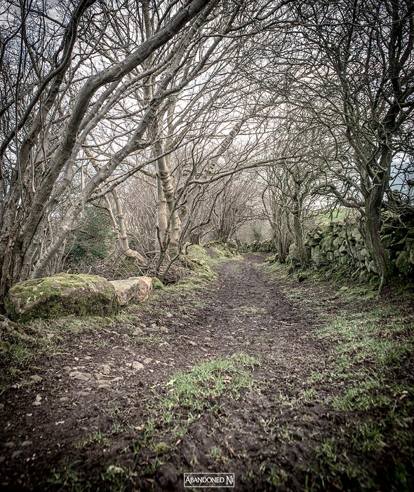 The Hidden Village - Northern Ireland