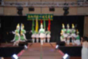 2008-09-20年會,San Gabriel Hilton, 儀隊首次當台演