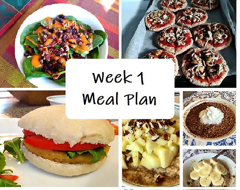 Week 1: Getting Started