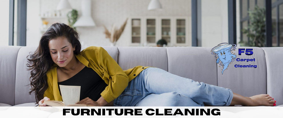 furniture cleaning-4.jpg