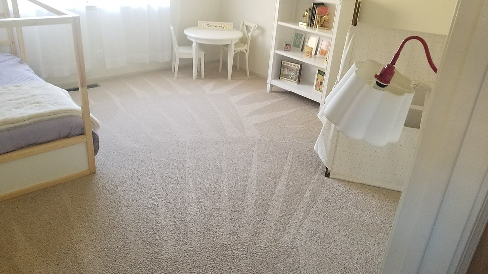 cleaned carpet.jpg